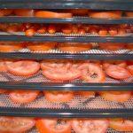 دستگاه خشک کن گوجه